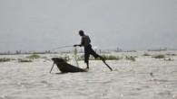 Ve východní Barmě se nalézá jezero Inle v nadmořské výšce 880 metrů, které má 116 km2. Místní rybáři si zde osvojili jedinečný způsob pádlování jednou nohou. Tento způsob jim umožňuje […]
