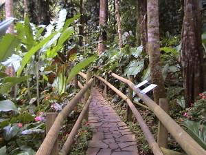 Parc Zoologique et Botanique des Mamelles