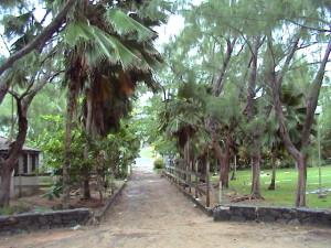 cesta k pláži Anse l'Étang