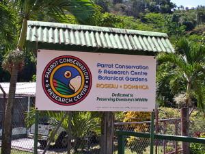 Roseau Parrot  Conservation &  Research Centre