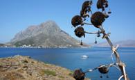 Knejefektnějším fotografiím zřeckých ostrovů, jež bývají k vidění vreklamách, patří už dlouho prosluněné záběry modrobílých kostelních zvonic na Santorini. Vposlední době je ale téhle kykladské klasice zdatnou konkurencí Kalymnos, […]